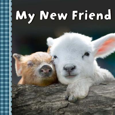 My New Friend Cover Image