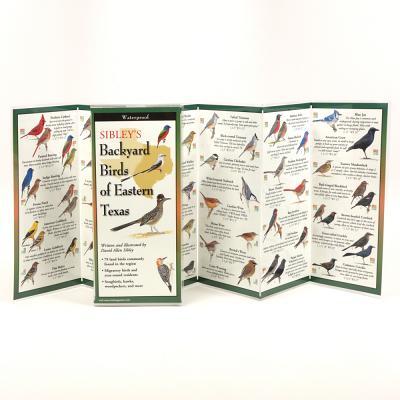Sibley's Backyard Birds of Eastern Texas Cover Image