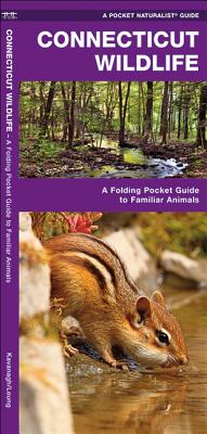 Connecticut Wildlife: A Folding Pocket Guide to Familiar Species (Pocket Naturalist Guides) Cover Image