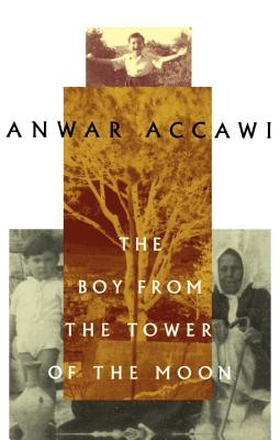 The Boy from the Tower of the Moon Cover Image