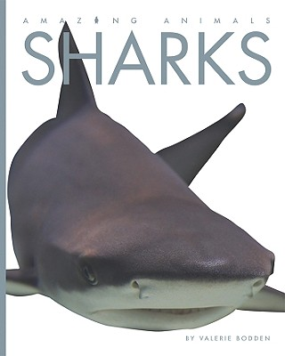 Cover for Sharks (Amazing Animals (Creative Education Hardcover))