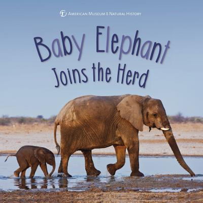 Cover for Baby Elephant Joins the Herd (First Discoveries)