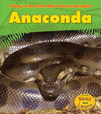 Anaconda (Day in the Life: Rain Forest Animals (Library)) Cover Image