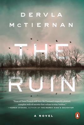 The Ruin: A Novel Cover Image