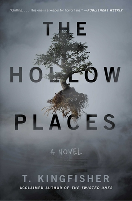 The Hollow Places: A Novel Cover Image