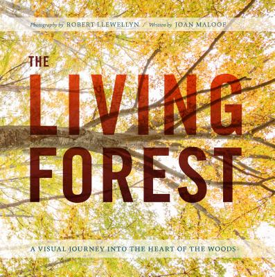 The Living Forest: A Visual Journey Into the Heart of the Woods Cover Image