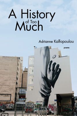 Cover for A History of Too Much