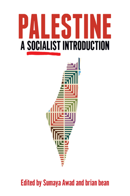 Palestine: A Socialist Introduction Cover Image