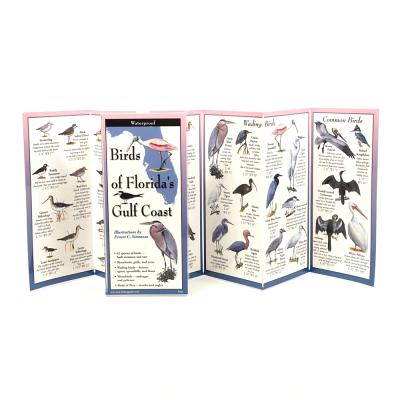 Birds of Florida's Gulf Coast Cover Image