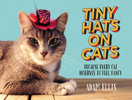 Tiny Hats on Cats Cover