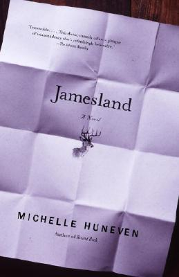 Jamesland (Vintage Contemporaries) Cover Image
