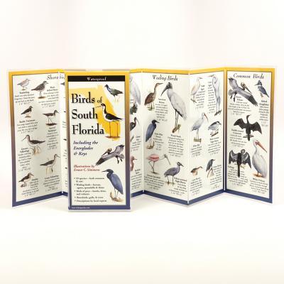 Birds of South Florida Cover Image