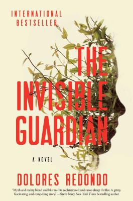 The Invisible Guardian: A Novel Cover Image