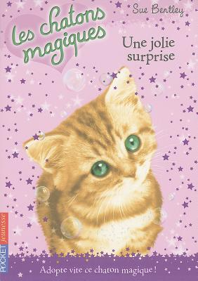Une Jolie Surprise = A Summer Spell (Magic Kitten #1) Cover Image