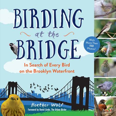 Birding at the Bridge Cover