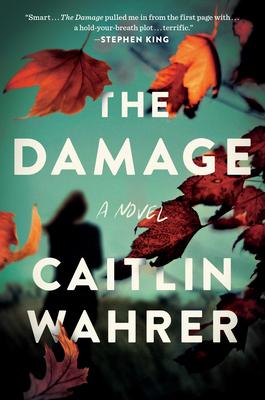 The Damage: A Novel Cover Image