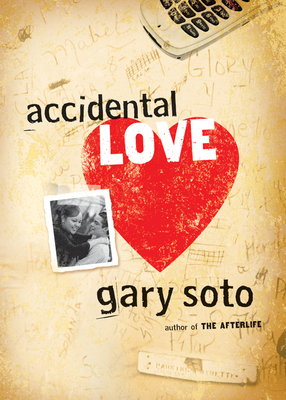 Accidental Love Cover Image