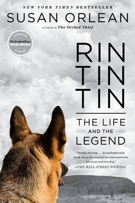 Rin Tin Tin Cover
