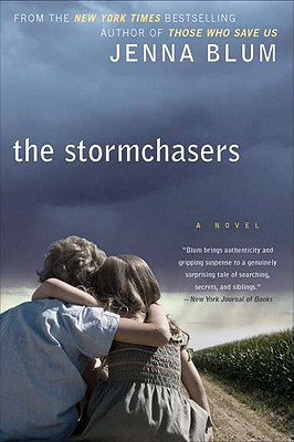 The Stormchasers Cover