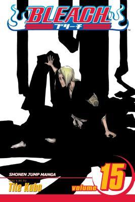 Bleach, Vol. 15 cover image