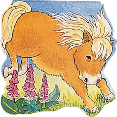 Pocket Pony (Pocket Pals) Cover Image
