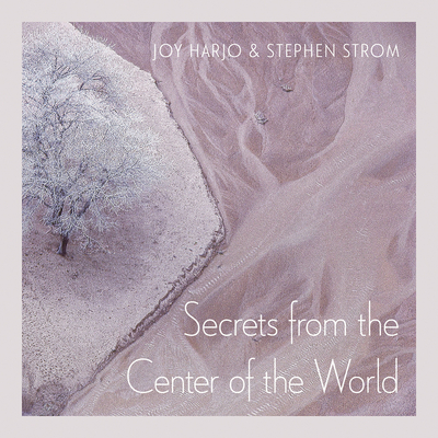 Secrets from the Center of the World (Sun Tracks  #17) Cover Image
