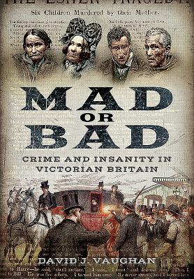 Mad or Bad: Crime and Insanity in Victorian Britain Cover Image