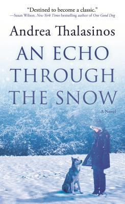 An Echo Through the Snow Cover Image