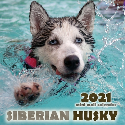 The Siberian Husky 2021 Mini Wall Calendar Cover Image