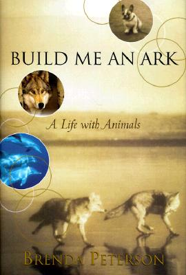 Build Me an Ark Cover