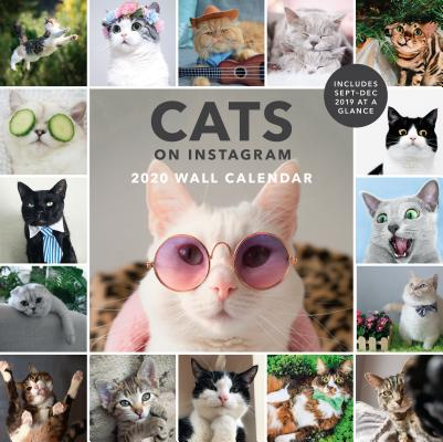 Cats on Instagram 2020 Wall Calendar Cover Image
