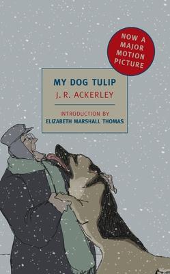 My Dog Tulip Cover