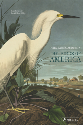 The Birds of America Cover Image