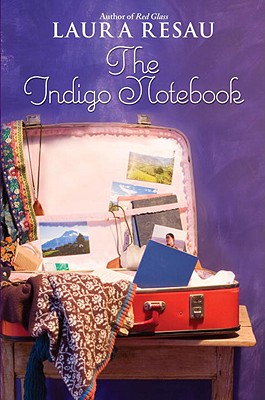 The Indigo Notebook Cover