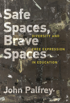 Cover for Safe Spaces, Brave Spaces