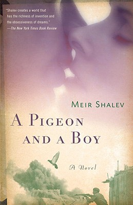 A Pigeon and a Boy Cover