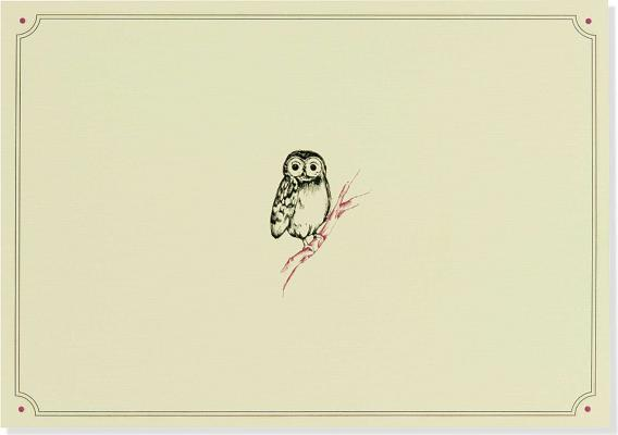 Note Card Owl Portrait Cover Image