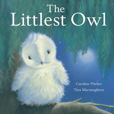The Littlest Owl Cover