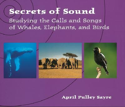 Secrets of Sound Cover