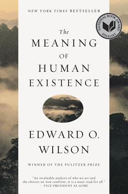 The Meaning of Human Existence Cover Image