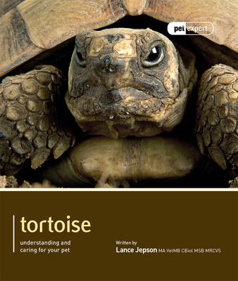 Tortoise (Pet Expert) Cover Image
