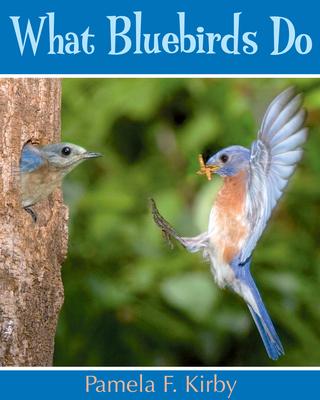 What Bluebirds Do Cover