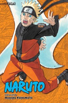 Naruto (3-in-1 Edition), Vol. 19 cover image