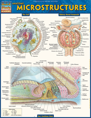 Anatomy: Microstructures Cover Image