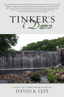 Cover for Tinker's Damn