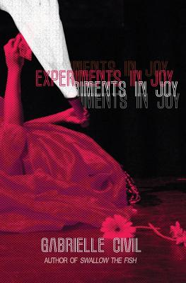 Experiments in Joy Cover Image