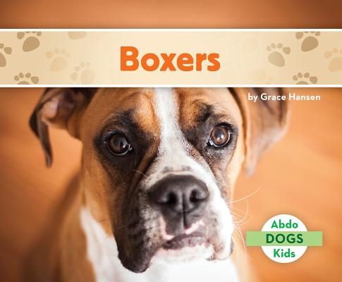 Boxers Cover Image