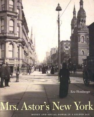Mrs. Astor's New York: Money and Social Power in a Gilded Age Cover Image