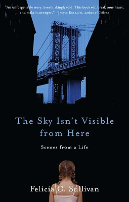 The Sky Isn't Visible from Here Cover