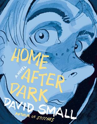 Home After Dark Cover Image